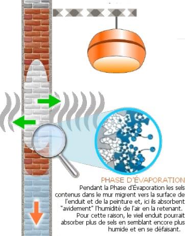 assèchement d'un mur humide – phase I